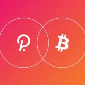 polkadot bitcoin