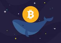 数据:比特币鲸鱼数量创历史新高