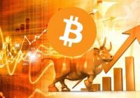 BlockTower Capital首席信息官:加密货币牛市还会持续9-22个月