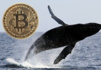 巨鲸未出售比特币,比特币上升趋势尚未结束