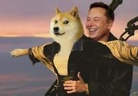 Elon-musk-shiba-uni-SHIB