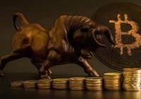 bitcoin-btc-bull-run