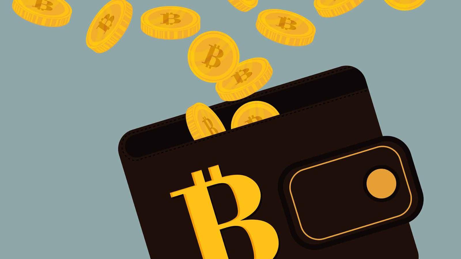 bitcoin-wallet.jpg