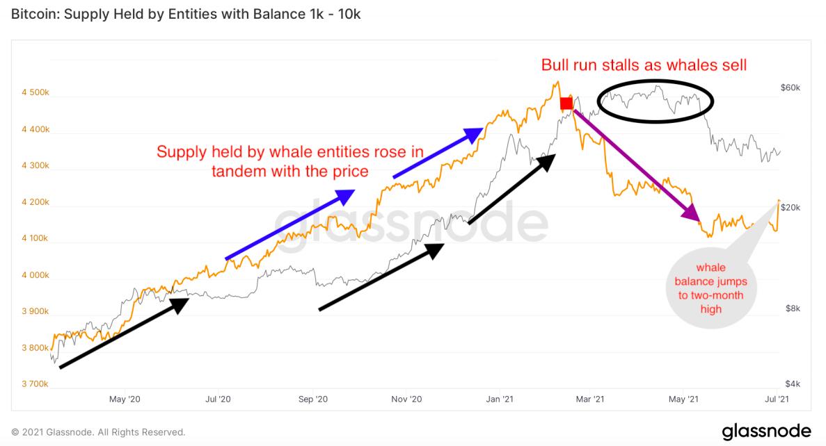 鲸鱼持有的比特币供应量创下两个月来新高,市场或已触底?